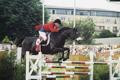 RDS Dublin Horse Show 2000, Rob Hoekstra on Lionel for Great Britain
