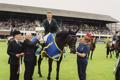 RDS Dublin Horse Show 2000, Presentation made to winner of the Kerrygold International Grand Prix, Cameron Hanley on Ballaseyr Twilight for Ireland